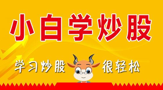 小白学炒股-股票入门-股票教程